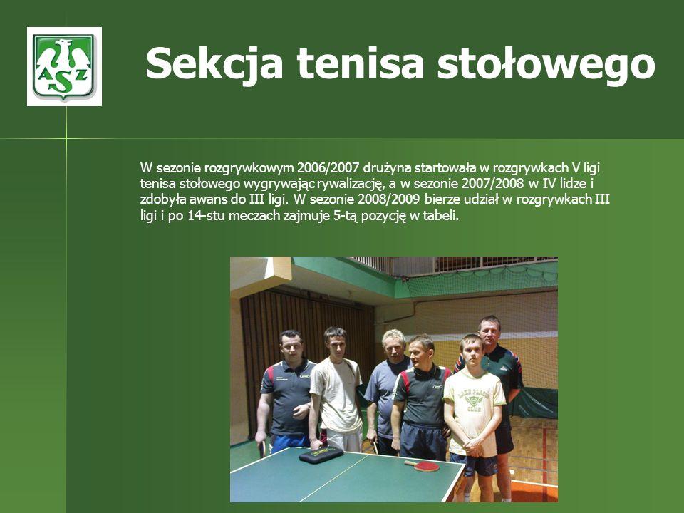W sezonie rozgrywkowym 2006/2007 drużyna startowała w rozgrywkach V ligi tenisa stołowego wygrywając rywalizację, a w sezonie 2007/2008 w IV lidze i z