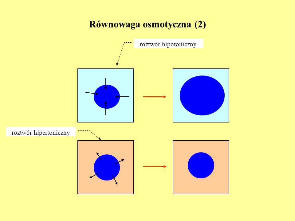 Zależność przepływów od sił termodynamicznych - termodyfuzja T1T1 T2T2 T 1 > T 2 Q