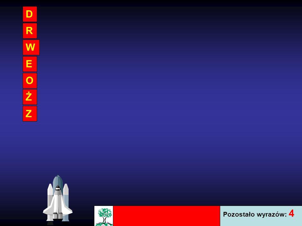 W tej grze nauczysz się poprawnej pisowni wyrazów. Z rozrzuconych liter ułóż słowo, które pokazane jest na obrazku. Zaznacz po kolei litery, aby ułoży