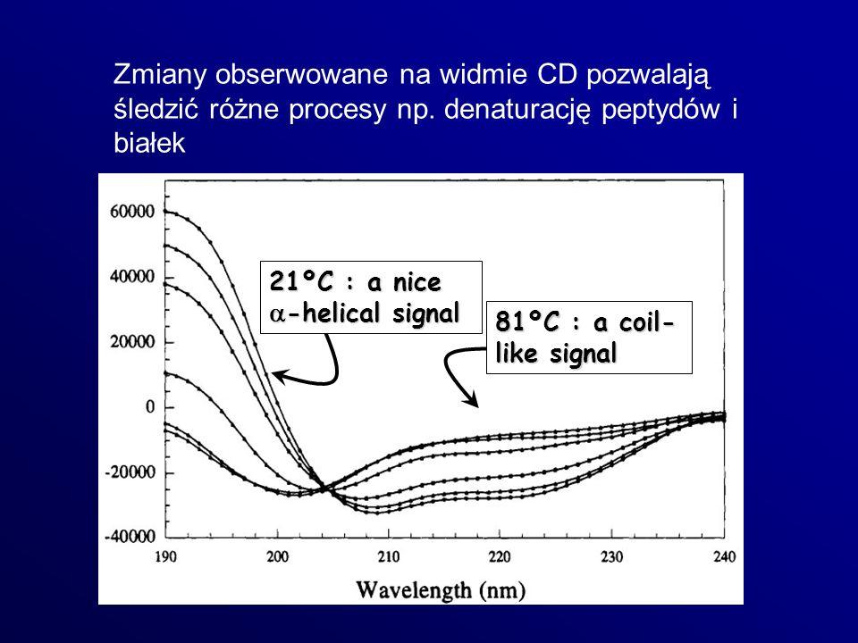 Zmiany obserwowane na widmie CD pozwalają śledzić różne procesy np. denaturację peptydów i białek 21ºC : a nice -helical signal 81ºC : a coil- like si