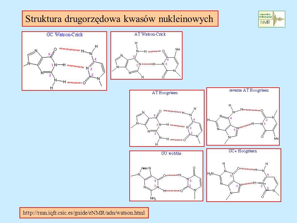 http://rmn.iqfr.csic.es/guide/eNMR/adn/watson.html Struktura drugorzędowa kwasów nukleinowych