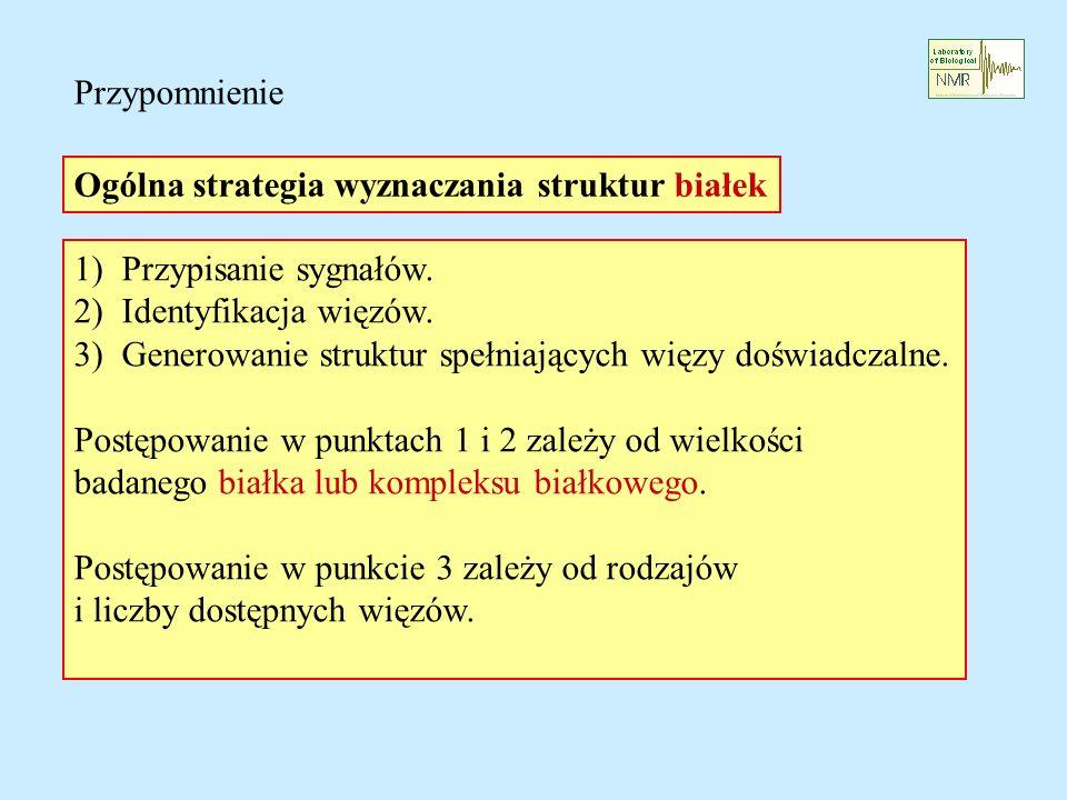 Ogólna strategia wyznaczania struktur białek 1) Przypisanie sygnałów.