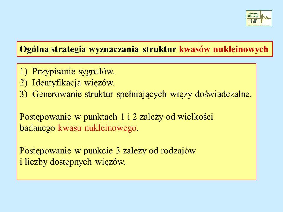 Ogólna strategia wyznaczania struktur kwasów nukleinowych 1) Przypisanie sygnałów.