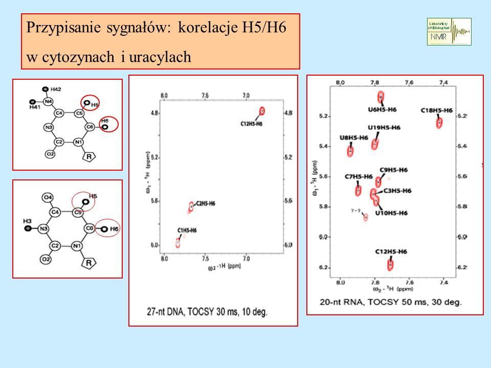 Przypisanie sygnałów: korelacje H5/H6 w cytozynach i uracylach