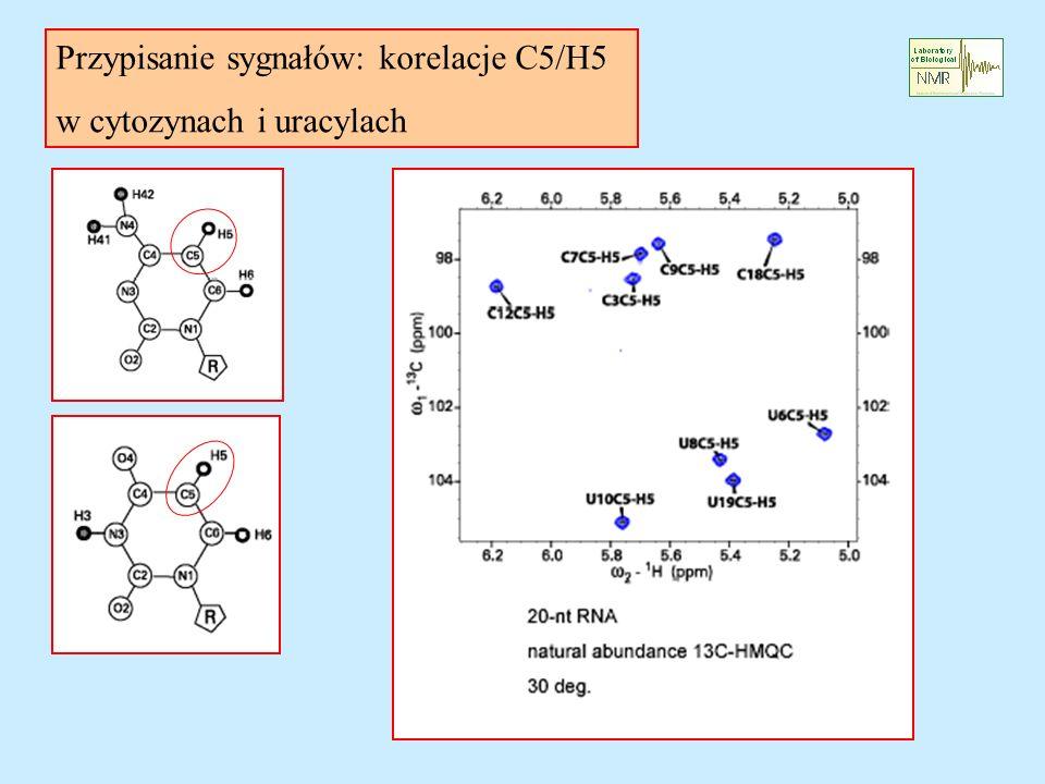 Przypisanie sygnałów: korelacje C5/H5 w cytozynach i uracylach