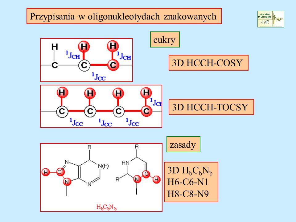 3D HCCH-COSY 3D HCCH-TOCSY 3D H b C b N b H6-C6-N1 H8-C8-N9 Przypisania w oligonukleotydach znakowanych cukry zasady