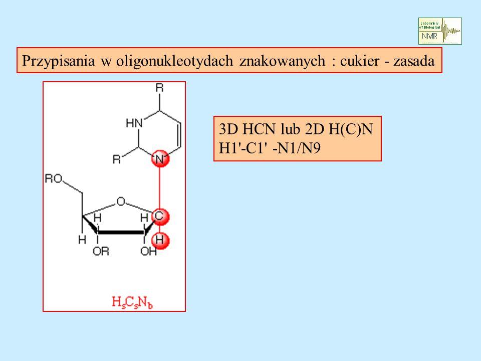 3D HCN lub 2D H(C)N H1 -C1 -N1/N9 Przypisania w oligonukleotydach znakowanych : cukier - zasada