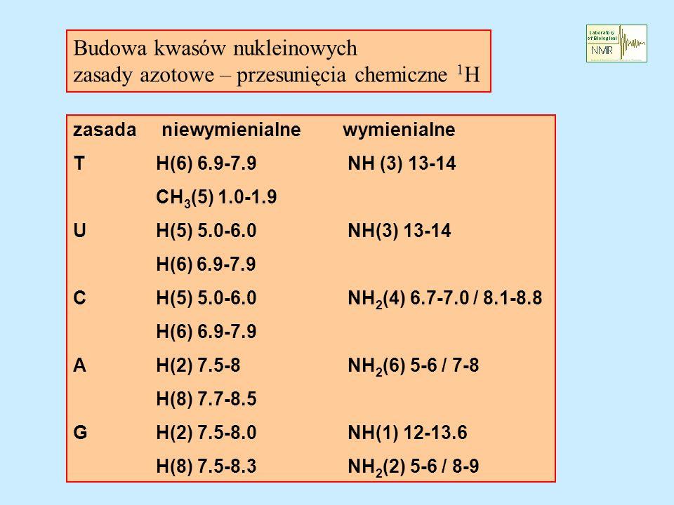 zasada niewymienialnewymienialne T H(6) 6.9-7.9 NH (3) 13-14 CH 3 (5) 1.0-1.9 U H(5) 5.0-6.0 NH(3) 13-14 H(6) 6.9-7.9 C H(5) 5.0-6.0 NH 2 (4) 6.7-7.0 / 8.1-8.8 H(6) 6.9-7.9 A H(2) 7.5-8 NH 2 (6) 5-6 / 7-8 H(8) 7.7-8.5 G H(2) 7.5-8.0 NH(1) 12-13.6 H(8) 7.5-8.3 NH 2 (2) 5-6 / 8-9 Budowa kwasów nukleinowych zasady azotowe – przesunięcia chemiczne 1 H