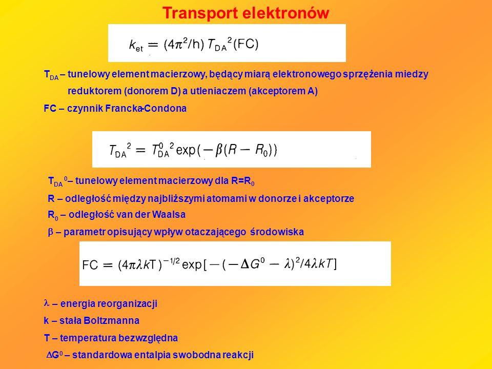 Transport elektronów T DA –tunelowy element macierzowy, będący miarą elektronowego sprzężenia miedzy reduktorem (donorem D) a utleniaczem (akceptorem