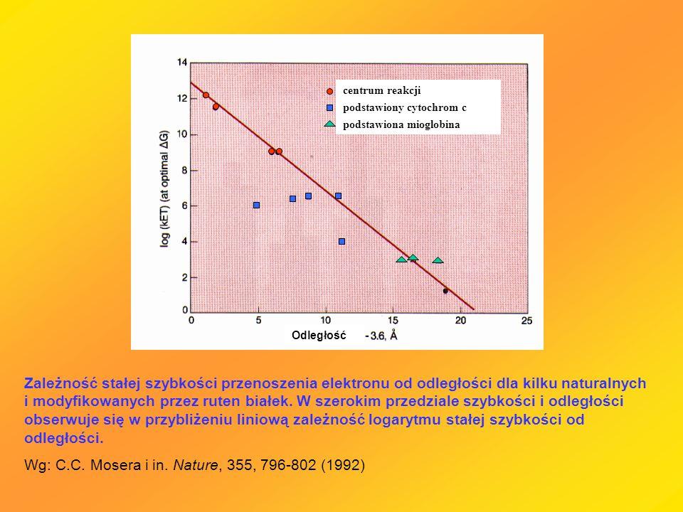 Zależność stałej szybkości przenoszenia elektronu od odległości dla kilku naturalnych i modyfikowanych przez ruten białek. W szerokim przedziale szybk