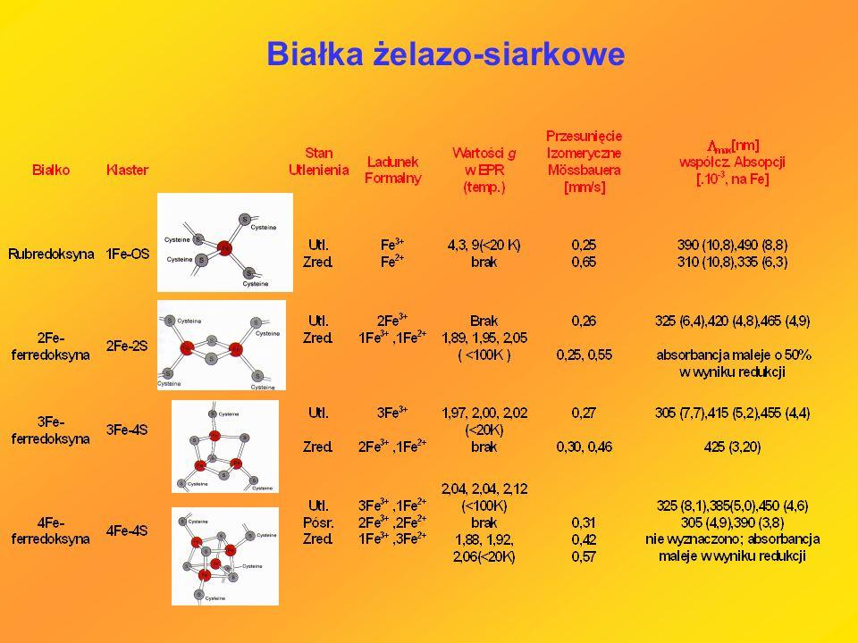 Białka żelazo-siarkowe