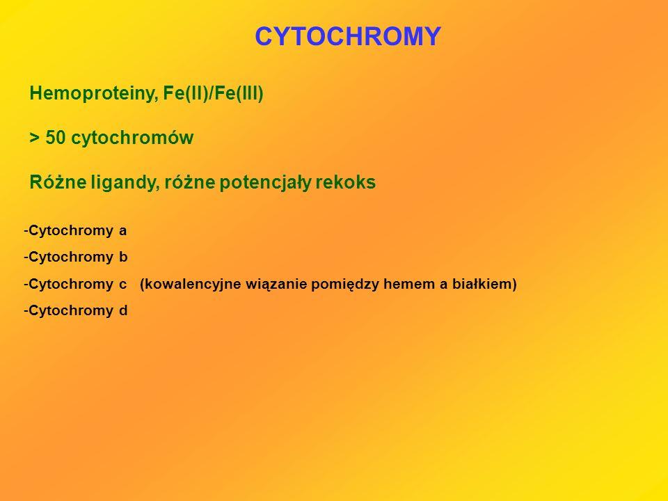 CYTOCHROMY Hemoproteiny, Fe(II)/Fe(III) > 50 cytochromów Różne ligandy, różne potencjały rekoks -Cytochromy a -Cytochromy b -Cytochromy c (kowalencyjn