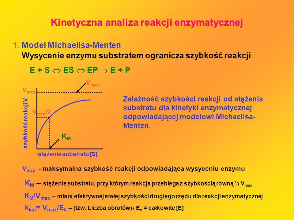 Kinetyczna analiza reakcji enzymatycznej 1. Model Michaelisa-Menten Zależność szybkości reakcji od stężenia substratu dla kinetyki enzymatycznej odpow