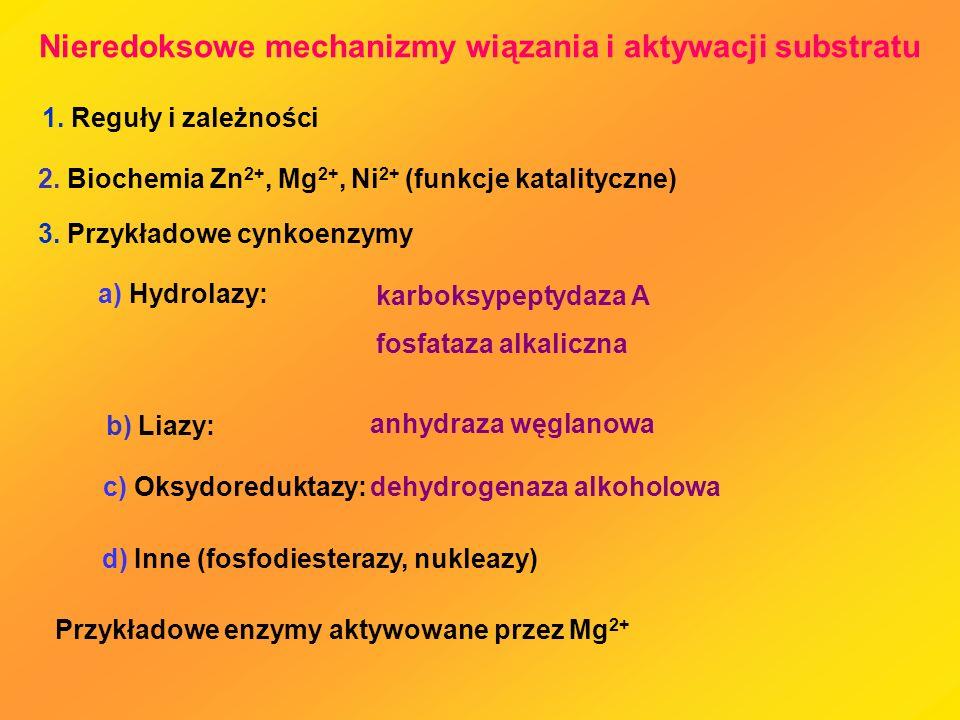 Nieredoksowe mechanizmy wiązania i aktywacji substratu 1. Reguły i zależności 2. Biochemia Zn 2+, Mg 2+, Ni 2+ (funkcje katalityczne) 3. Przykładowe c