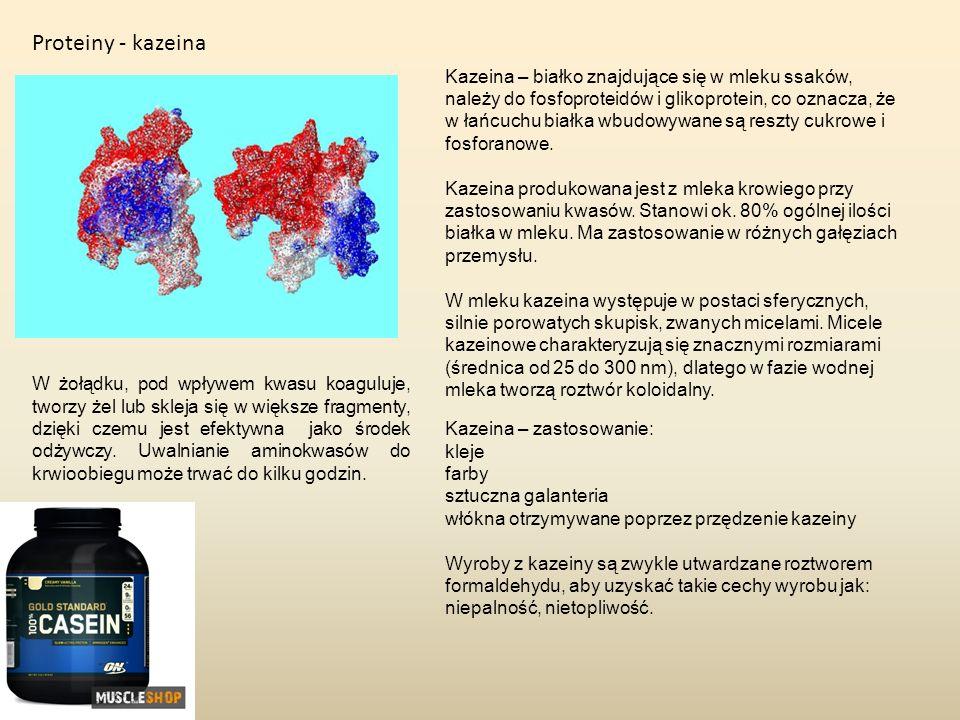 Proteiny - kazeina Kazeina – białko znajdujące się w mleku ssaków, należy do fosfoproteidów i glikoprotein, co oznacza, że w łańcuchu białka wbudowywa