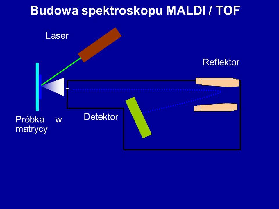 Budowa spektroskopu MALDI / TOF Laser Próbka w matrycy Reflektor Detektor