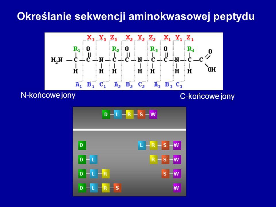 Określanie sekwencji aminokwasowej peptydu C-końcowe jony N-końcowe jony