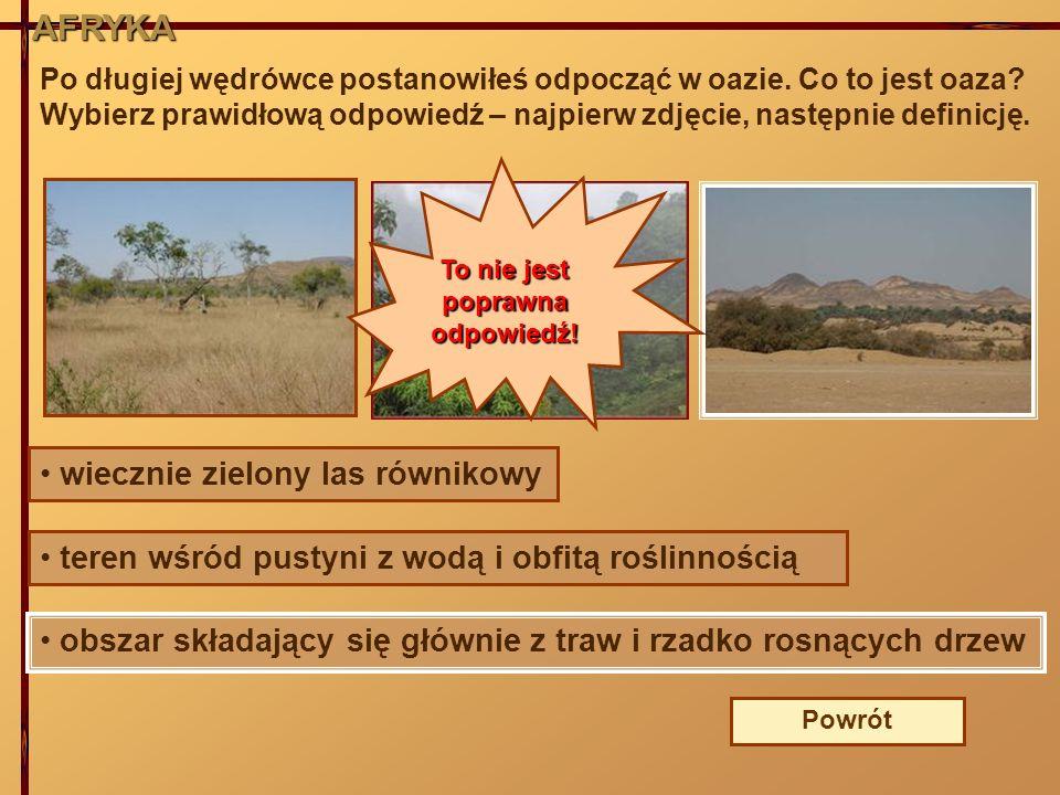 AFRYKA Po długiej wędrówce postanowiłeś odpocząć w oazie. Co to jest oaza? Wybierz prawidłową odpowiedź – najpierw zdjęcie, następnie definicję. wiecz