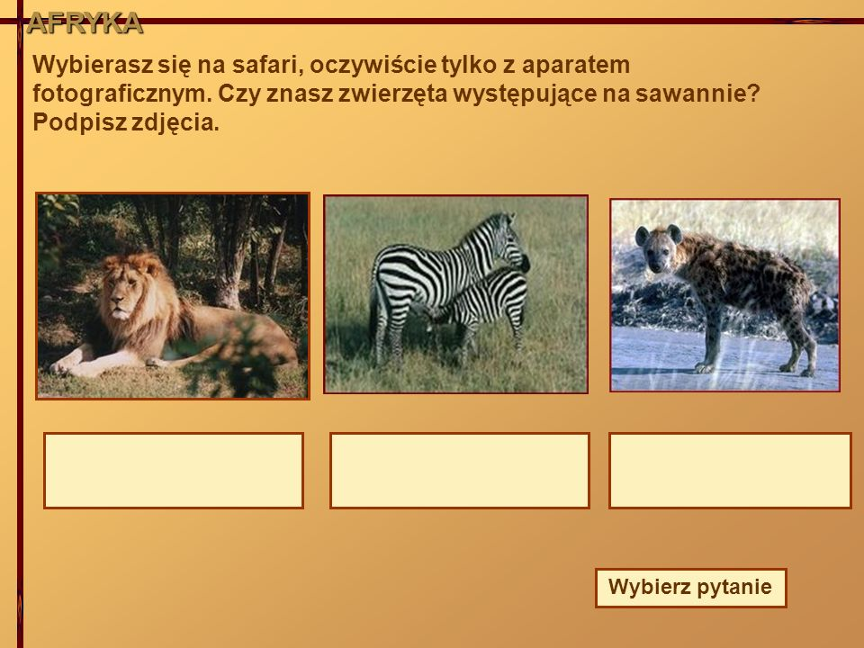 AFRYKA Wybierasz się na safari, oczywiście tylko z aparatem fotograficznym. Czy znasz zwierzęta występujące na sawannie? Podpisz zdjęcia. Wybierz pyta