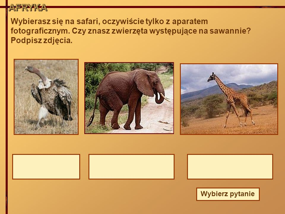 AFRYKAAFRYKA Wybierasz się na safari, oczywiście tylko z aparatem fotograficznym. Czy znasz zwierzęta występujące na sawannie? Podpisz zdjęcia. Wybier
