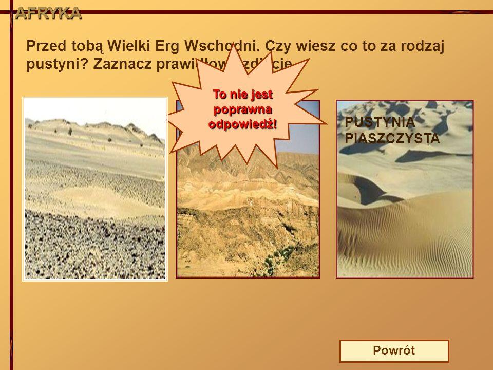 AFRYKA Przed tobą Wielki Erg Wschodni. Czy wiesz co to za rodzaj pustyni? Zaznacz prawidłowe zdjęcie. PUSTYNIA ŻWIROWA PUSTYNIA PIASZCZYSTA PUSTYNIA K