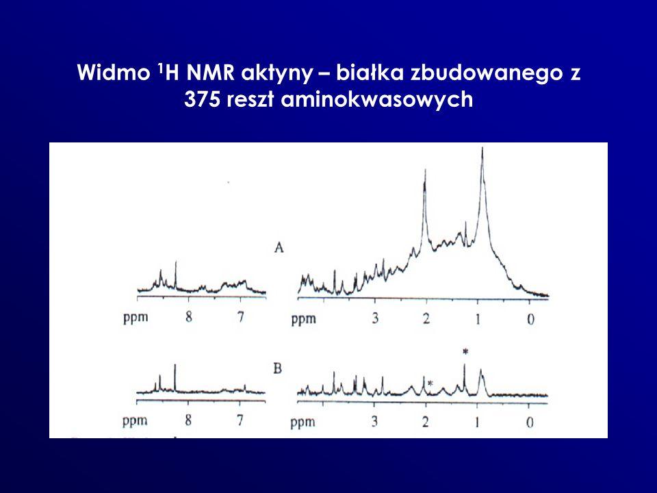 Widmo 1 H NMR aktyny – białka zbudowanego z 375 reszt aminokwasowych