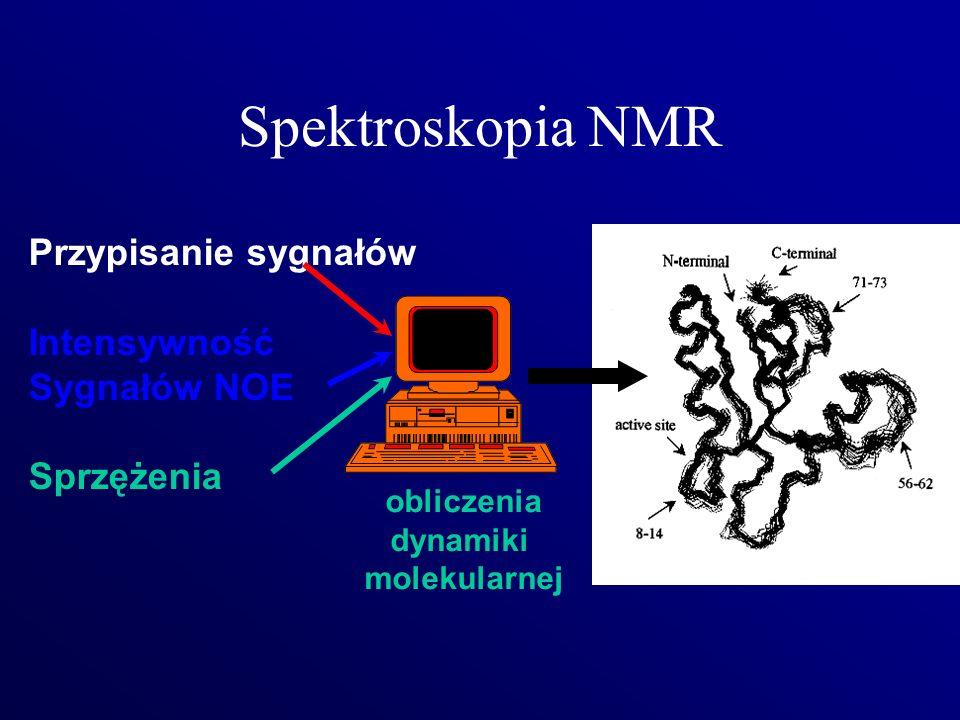 Spektroskopia NMR Przypisanie sygnałów Intensywność Sygnałów NOE Sprzężenia obliczenia dynamiki molekularnej