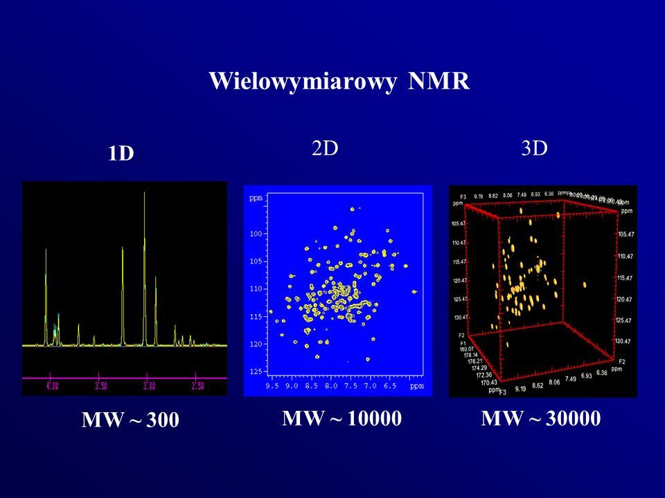Wielowymiarowy NMR 1D 2D3D MW ~ 300 MW ~ 10000MW ~ 30000