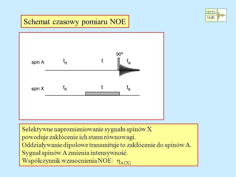 Schemat czasowy pomiaru NOE Selektywne napromieniowanie sygnału spinów X powoduje zakłócenie ich stanu równowagi. Oddziaływanie dipolowe transmituje t