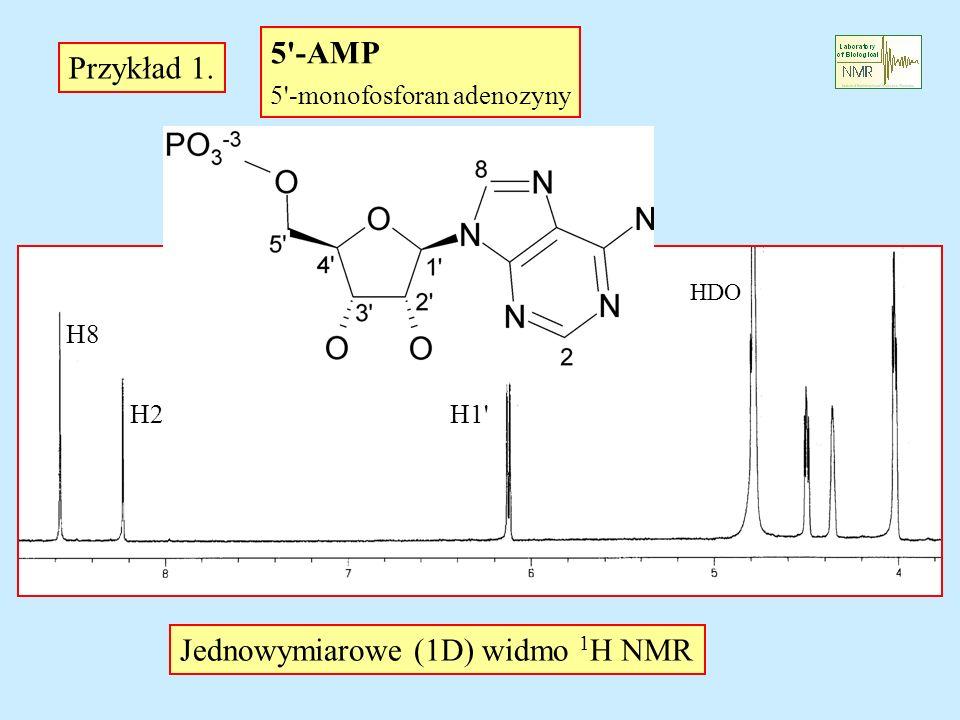 5'-AMP 5'-monofosforan adenozyny Przykład 1. Jednowymiarowe (1D) widmo 1 H NMR HDO H1' H8 H2