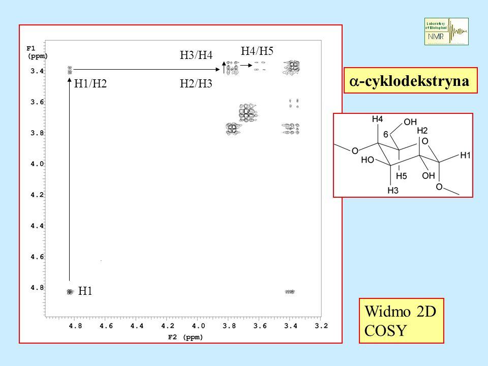 H1 H1/H2H2/H3 H3/H4 H4/H5 Widmo 2D COSY -cyklodekstryna