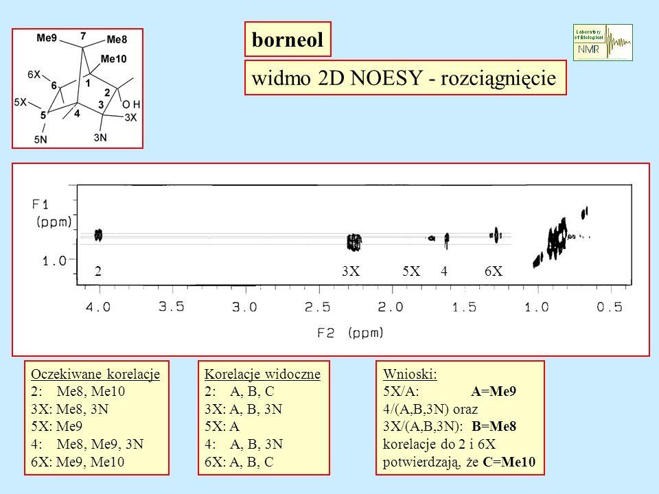 borneol widmo 2D NOESY - rozciągnięcie 23X5X46X Oczekiwane korelacje 2: Me8, Me10 3X: Me8, 3N 5X: Me9 4: Me8, Me9, 3N 6X: Me9, Me10 Korelacje widoczne