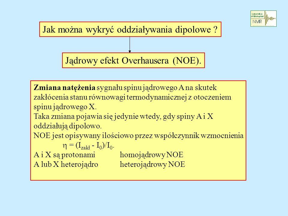 Jak można wykryć oddziaływania dipolowe ? Jądrowy efekt Overhausera (NOE). Zmiana natężenia sygnału spinu jądrowego A na skutek zakłócenia stanu równo