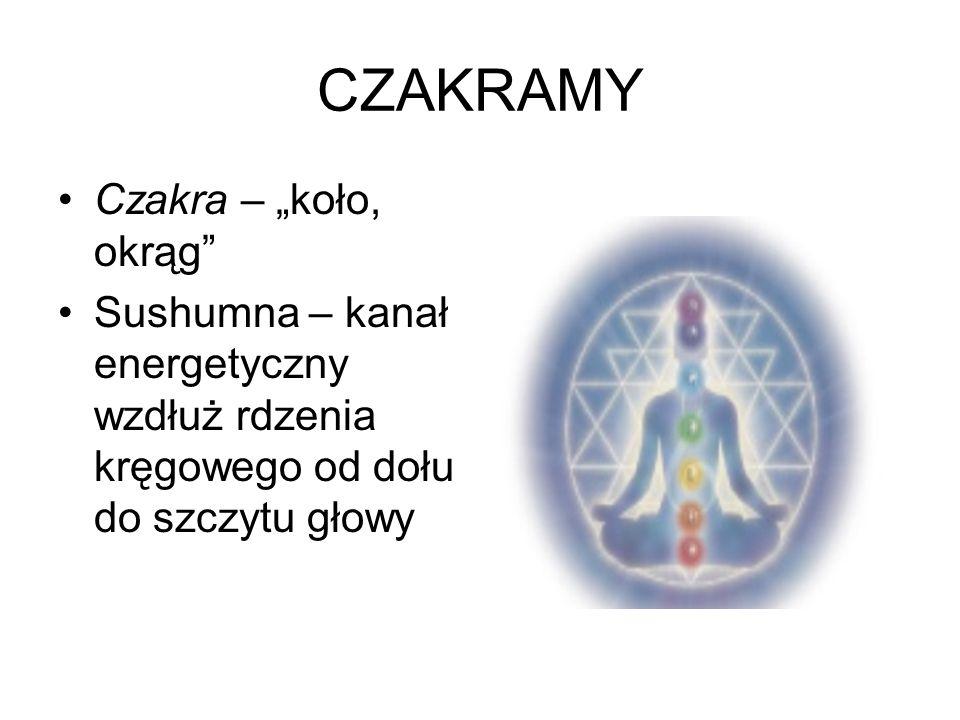 CZAKRAMY Czakra – koło, okrąg Sushumna – kanał energetyczny wzdłuż rdzenia kręgowego od dołu do szczytu głowy