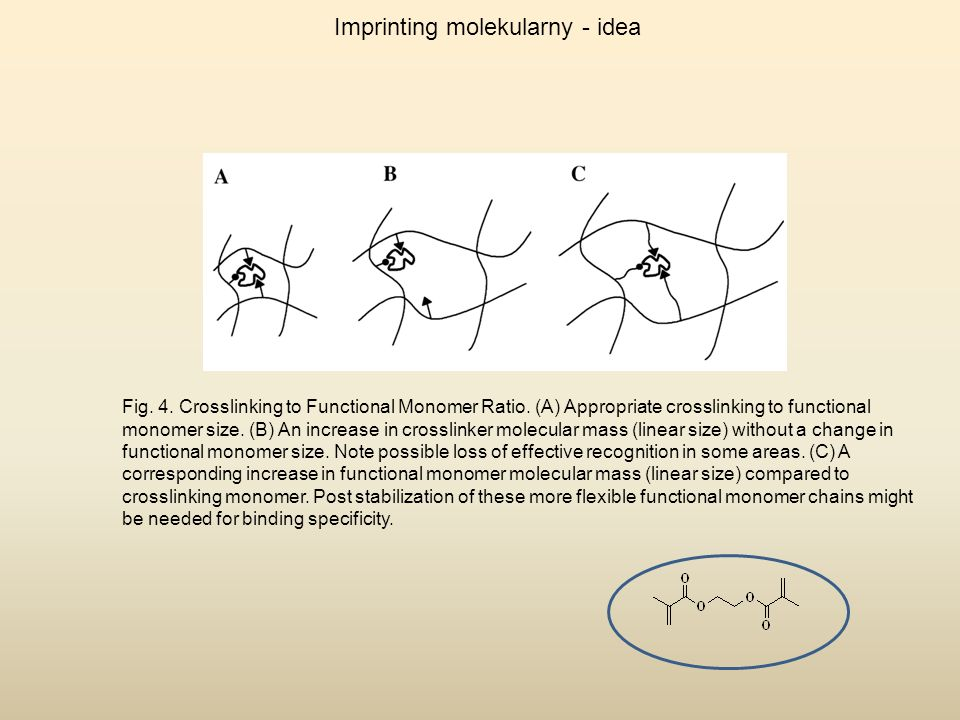 Imprinting molekularny - idea Fig. 4. Crosslinking to Functional Monomer Ratio. (A) Appropriate crosslinking to functional monomer size. (B) An increa
