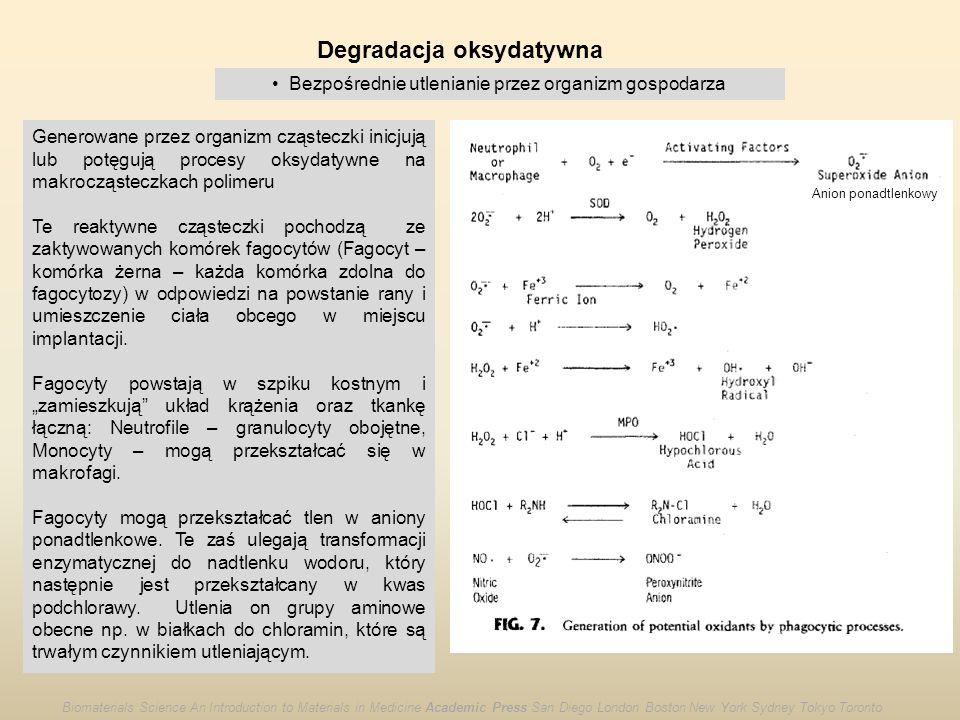 Degradacja oksydatywna Bezpośrednie utlenianie przez organizm gospodarza Generowane przez organizm cząsteczki inicjują lub potęgują procesy oksydatywn