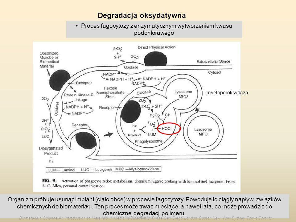 Degradacja oksydatywna Proces fagocytozy z enzymatycznym wytworzeniem kwasu podchlorawego myeloperoksydaza Organizm próbuje usunąć implant (ciało obce