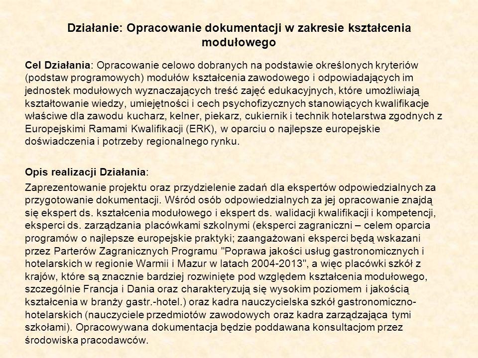 Działanie: Opracowanie dokumentacji w zakresie kształcenia modułowego Cel Działania: Opracowanie celowo dobranych na podstawie określonych kryteriów (