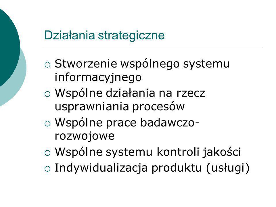 Działania strategiczne Stworzenie wspólnego systemu informacyjnego Wspólne działania na rzecz usprawniania procesów Wspólne prace badawczo- rozwojowe