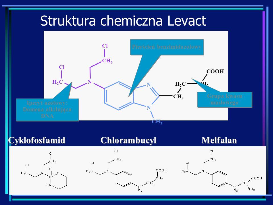 Struktura chemiczna Levact CH 3 N N CH 2 H2CH2C COOH NH2CH2C CH 2 Cl Cyklofosfamid Melfalan Chlorambucyl Iperyt azotowy: Domena alkilująca DNA Iperyt