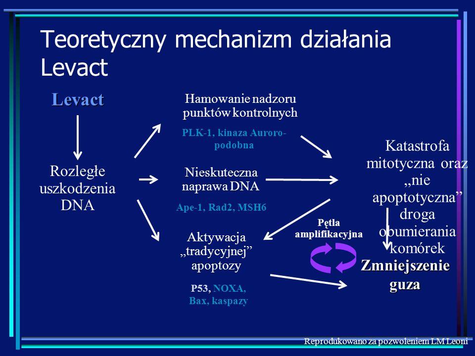 Rozległe uszkodzenia DNA Hamowanie nadzoru punktów kontrolnych, P53, NOXA, Bax, kaspazy Ape-1, Rad2, MSH6 PLK-1, kinaza Auroro- podobna Levact Teorety