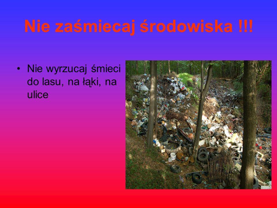 Nie zaśmiecaj środowiska !!! Nie wyrzucaj śmieci do lasu, na łąki, na ulice