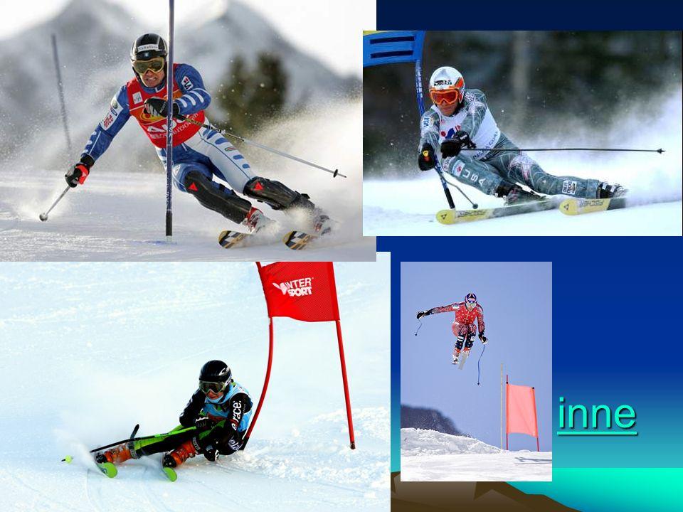Slalom (SL) Slalom to konkurencja dla młodych ludzi.