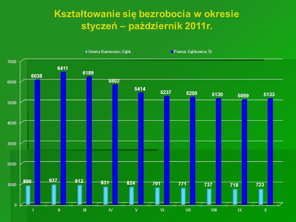 Kształtowanie się bezrobocia w okresie styczeń – październik 2011r.