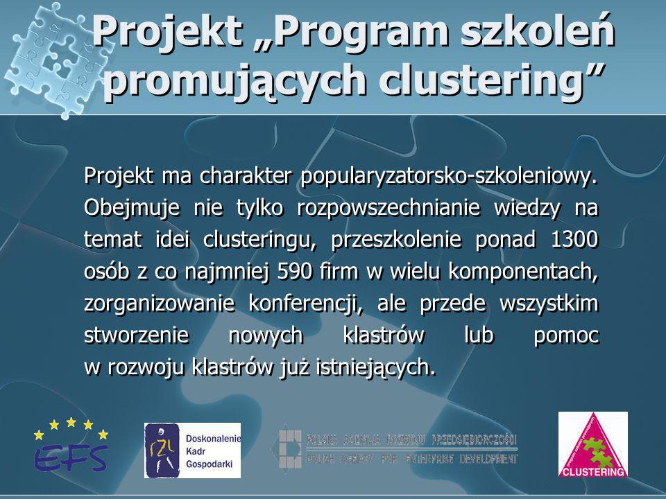 Projekt Program szkoleń promujących clustering Projekt ma charakter popularyzatorsko-szkoleniowy. Obejmuje nie tylko rozpowszechnianie wiedzy na temat