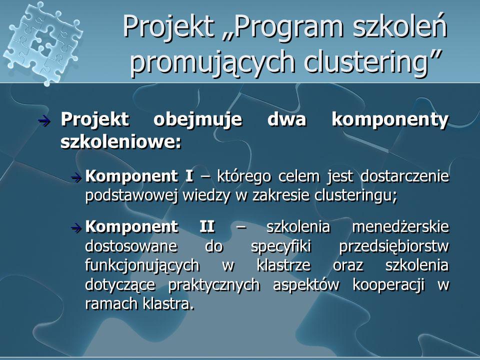 Projekt Program szkoleń promujących clustering Projekt obejmuje dwa komponenty szkoleniowe: Komponent I – którego celem jest dostarczenie podstawowej