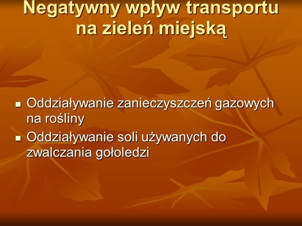 Negatywny wpływ transportu na zieleń miejską Oddziaływanie zanieczyszczeń gazowych na rośliny Oddziaływanie zanieczyszczeń gazowych na rośliny Oddział