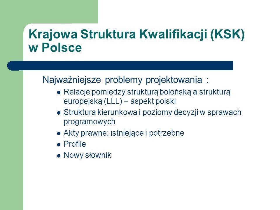 Krajowa Struktura Kwalifikacji (KSK) w Polsce Najważniejsze problemy projektowania : Relacje pomiędzy strukturą bolońską a strukturą europejską (LLL) – aspekt polski Struktura kierunkowa i poziomy decyzji w sprawach programowych Akty prawne: istniejące i potrzebne Profile Nowy słownik