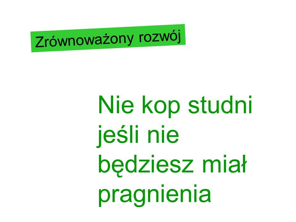 4 + 1 pola ZR społeczeństwo ekonomia ekologia nauka/wiedza