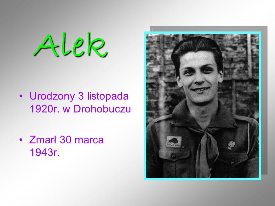 Urodzony 3 listopada 1920r. w Drohobuczu Zmarł 30 marca 1943r. Alek